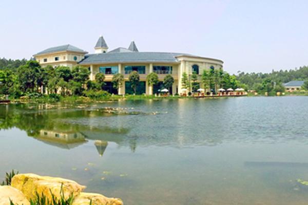 河湖生态治理